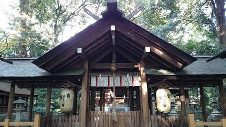 木島神社 蚕の社 本殿.jpg
