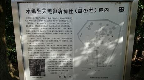 木嶋坐天照御魂神社 木島神社 蚕の社.jpg